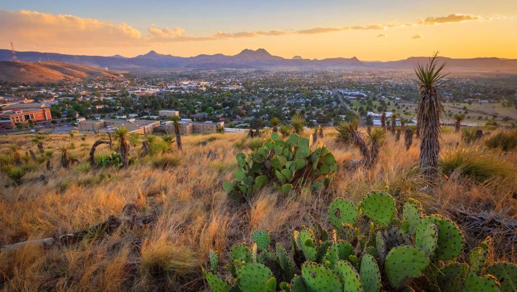 Cacti, trees and desert grass are in the foreground while a city skyline and large mountains are viewed in the background.
